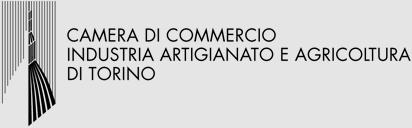 CAMERA DI COMMERCIO TORINO